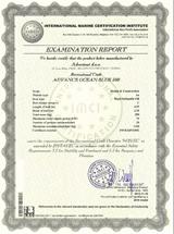 examination-report-3