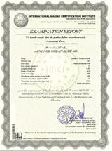 examination-report-4