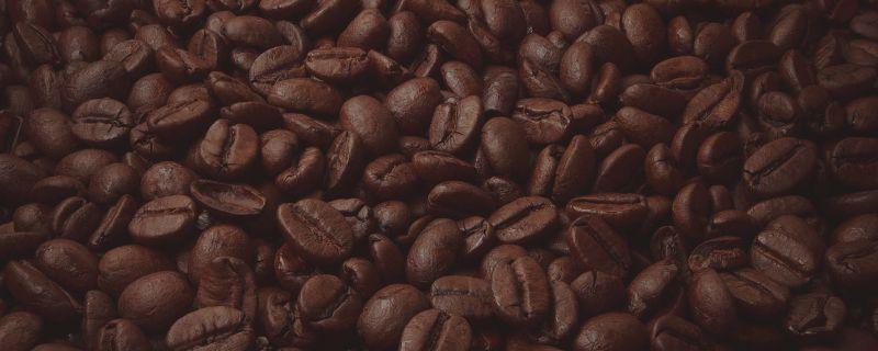 cafe-bg-07