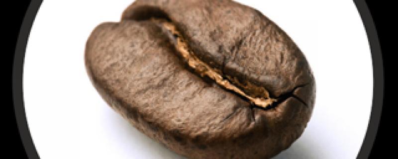 cafe-bean-01